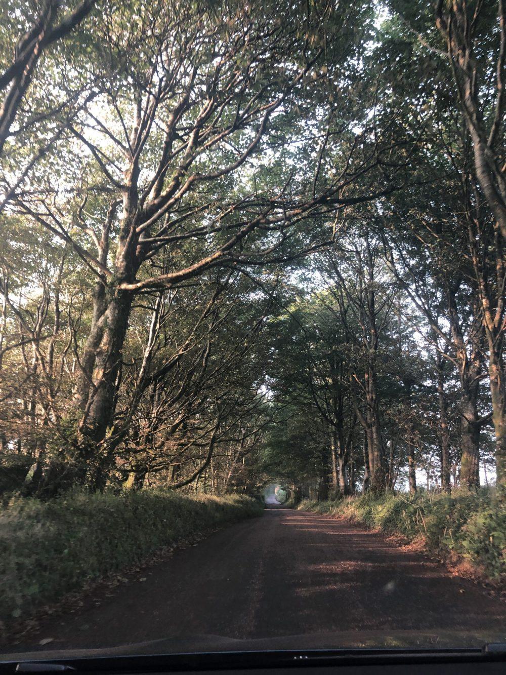 Strada viaggio Inghilterra